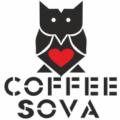 sova 120x120 - Курс Флейринг-базовый